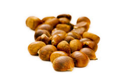 Many chestnuts isolated Royalty Free Stock Image