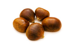 Many chestnuts isolated Royalty Free Stock Photo