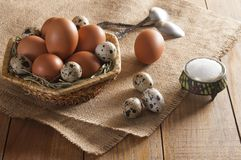 Many chicken and quail eggs, salt in saltshaker and two teaspoons. Large brown chicken eggs and small motley quail eggs on straw in wicker basket. Near three royalty free stock photo