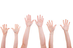 Many children hands high up. Isolated on white background. Studio shot stock photos