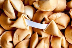 Many Chinese fortune cookie paper with prediction. Many Chinese fortune cookie close up paper with prediction filling the entire frame stock photo