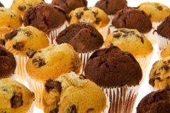Many chocolate muffins Stock Image