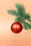 Many Christmas decorations-ball with pine branches Stock Images