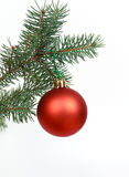 Many Christmas decorations with pine branches Stock Photo