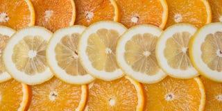 Many citrus Stock Photography