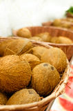 Many coconuts. On a basket Stock Image