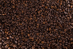 Many coffee beans. Many roasted coffee beans on a flat surface stock images