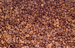 Many coffee beens texture. Many coffee beens as a background Royalty Free Stock Images