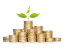 Many coins in column and green plant isolated on white Royalty Free Stock Photo