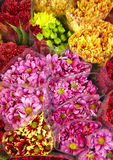Many color flower in shop Royalty Free Stock Images
