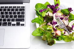 Many color salad with business laptop isolated on white Royalty Free Stock Photo