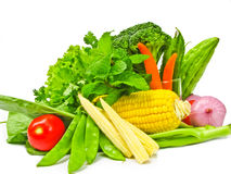 Many color of vegetables Royalty Free Stock Photography