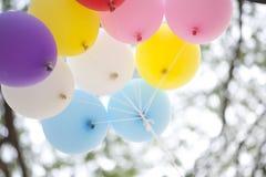 Many colored balloons Stock Photo