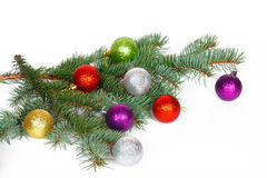 Many colored balls on the fir branch of Christmas tree Stock Image