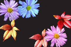 Many-colored flowers and leaves Stock Photos