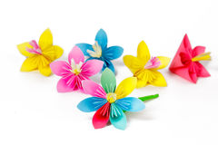 Many colored paper flowers Royalty Free Stock Photography