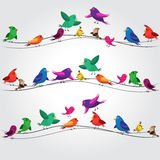Many colorful birds Royalty Free Stock Images