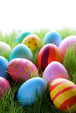 Many Colorful Easter Eggs On Green Grass royalty free stock images