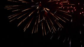 Many colorful fireworks explode in night sky stock footage