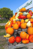 Many colorful ornamental gourds on a wagon Stock Photo