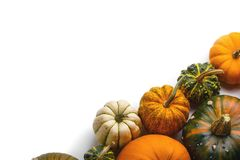 Many orange pumpkins. Many colorful pumpkins frame isolated on white background, autumn harvest, Halloween or Thanksgiving concept royalty free stock photography