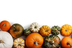 Many orange pumpkins. Many colorful pumpkins frame isolated on white background, autumn harvest , Halloween or Thanksgiving concept royalty free stock images