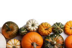 Many orange pumpkins. Many colorful pumpkins frame isolated on white background, autumn harvest , Halloween or Thanksgiving concept royalty free stock image