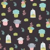 Succulents vector seamless pattern Stock Image