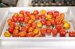 Many colorful Tomato red Stock Photos