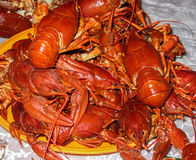 Many cooked crayfish on a plate. River delicatessen Stock Photo