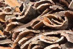 Many cork pieces in a deposit in Italy Royalty Free Stock Photography