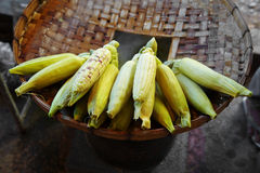 Many corn steam on wooden plate Stock Photography
