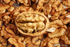 Many cracked walnuts Stock Images