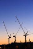 Many cranes at Australian construction site Stock Photography