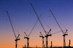 Many cranes at Australian construction site Royalty Free Stock Images