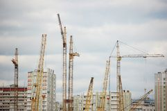 Many cranes on constraction site Royalty Free Stock Image