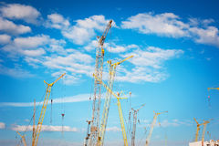 Many cranes on construction site Royalty Free Stock Images