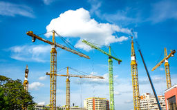 Many Cranes. Construction site with many colored cranes Royalty Free Stock Image