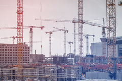 Many cranes and construction workers on  construction site Stock Image