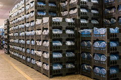 Many crates with bottles. stock images