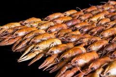 Many crawfishes Stock Photography