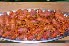 Many crawfishes Stock Photos