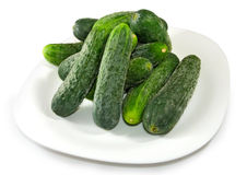 Many of cucumbers on a plate Stock Images