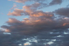 Many cumulonimbus clouds in the blue sky, sunset rays paint white and gray clouds in gentle pink color. Stock Photography