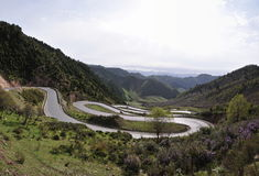 Many curve road. A Many curve road IN mountains Stock Photos
