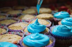 Many cutcakes being sprinkled with blue sweet cream. Many cupcakes are being covered with blue sweet cream for final delivery at the party stock images