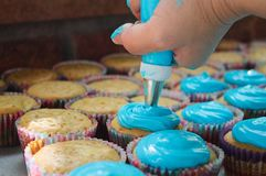 Many cutcakes being sprinkled with blue sweet cream. Many cupcakes are being covered with blue sweet cream for final delivery at the party royalty free stock image