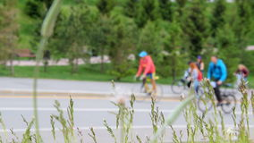 Many cyclists and walkers goes up and down a hill. Spikelets of grasses shaking from wind on front. Blurred background street in the city stock video