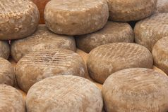 Artisan cheeses. Many delicious handmade cheeses in a street store Royalty Free Stock Photos