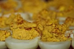 Many Deviled Eggs Paprika. Rows of many deviled eggs sprinkled with paprika stock photography